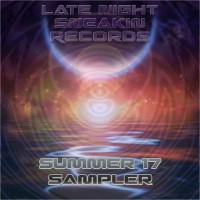 Simo & Mancub, Late Night Sneaky, B Smiley, Groovitational Fields Late Night Sneakin\' Records Summer \'17 Sampler