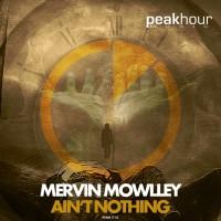 Mervin Mowlley Ain\'t Nothing
