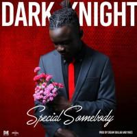 Dark Knight Special Somebody