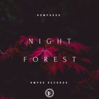Rompasso Night Forest