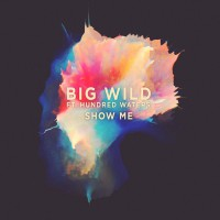 Big Wild Feat Hundred Waters Show Me