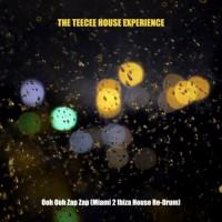 The Teecee House Experience Ooh Ooh Zap Zap