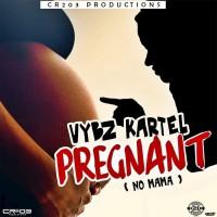 Vybz Kartel Pregnant