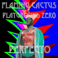 Flaming Cactus & Playground Zer0 Perfecto