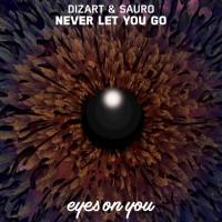 Dizart, Sauro Never Let You Go