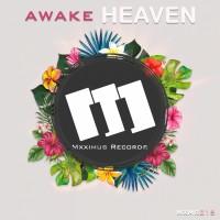 Awake Heaven