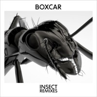 Boxcar Insect Remixes