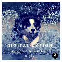 Digital Nation Hard With A Lot Of Style