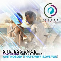 Ste Essence Feat Sheena Mchugh Ain\'t Nobody