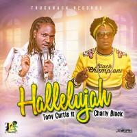 Tony Curtis Feat Charly Black Hallelujah Remix