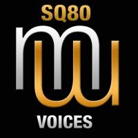 Sq80 Voices
