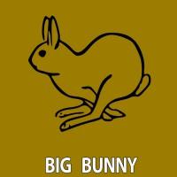 Big Bunny Feel The Sun