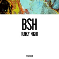 Bsh Funky Night