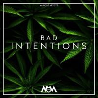 Va Bad Intentions