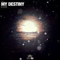 B1zz3r My Destiny
