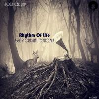 Rocka Fobic Deep Rhythm Of Life