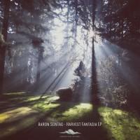 Aaron Sontag Harvest Fantasia EP