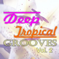 VA Deep & Tropical Grooves, Vol. 2