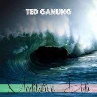 Ted Ganung Meditative Dub