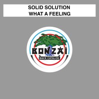 Solid Solution What A Feeling