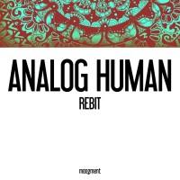 Analog Human Rebit