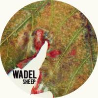 Wadel She EP