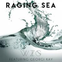 Wizg Raging Sea
