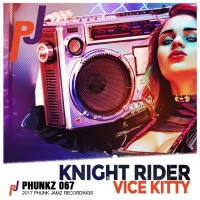 Vice Kitty Knight Rider