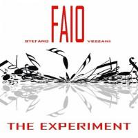 Stefano Faio Vezzani The Experiment