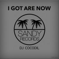 Dj Cocodil I Got Are Now
