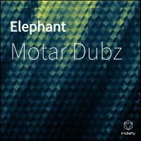 Motar Dubz Elephant