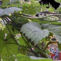 Gunther Maria Nagel Hopfenernte