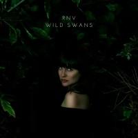 Rnv Wild Swans