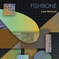 Low Manuel Fishbone