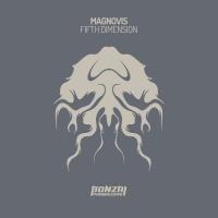 Magnovis Fifth Dimension