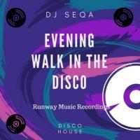 Dj Seqa Evening Walk In The Disco