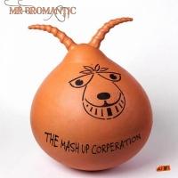 Tmc (the Mashup Corporation) Mr Bromantic