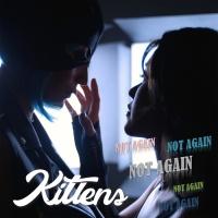 Kittens Not Again
