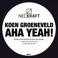 Koen Groeneveld Aha Yeah!