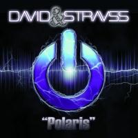 David & Strauss Polaris