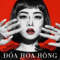 Chi Pu Doa Hoa Hong