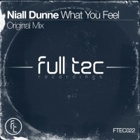 Niall Dunne What You Feel