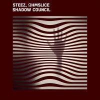 Steez, Ohmslice Shadow Council