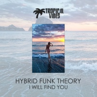 Hybrid Funk Theory I Will Find You