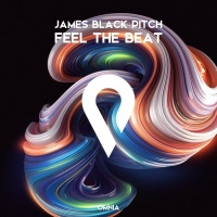 James Black Pitch Feel The Beat