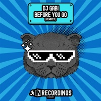 Dj Gabi Before You Go: Remixes