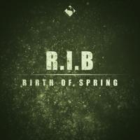 Rib Birth Of Spring