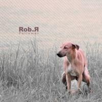 Rob R Follower