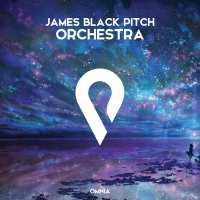 James Black Pitch Orchestra