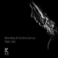 Monteq, Grisha Gerrus Feel Like Remixes